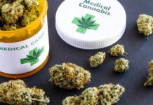 Νομιμοποιείται η χρήση κάνναβης για φαρμακευτικούς λόγους