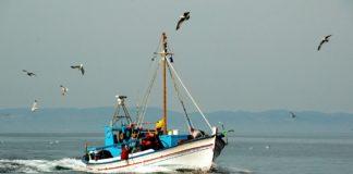 Ψαράς βρήκε πυρομαχικά στο Αιγαίο