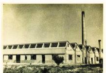 Η χρυσή εποχή της ανάπτυξης με τη θεμελίωση του Εργοστασίου παραγωγής πορσελάνης στη Νέα Μάκρη